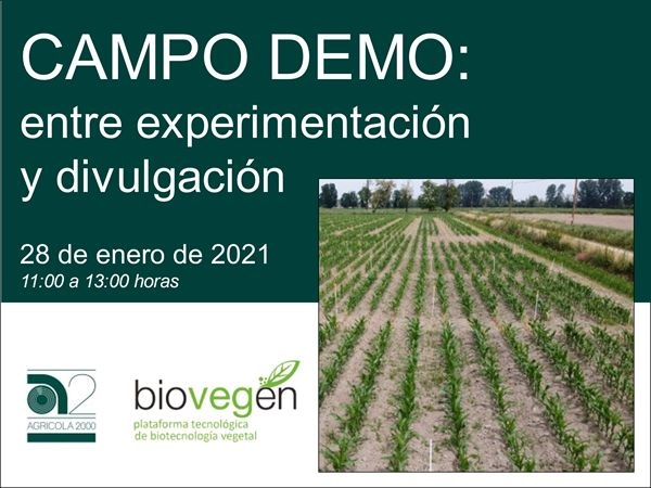 CAMPO DEMO: between experimentations and divulgation
